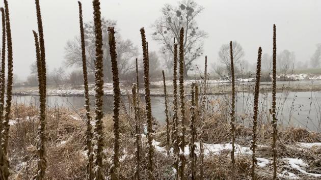 Zimní splutí řeky Opavy s přespáním v Diviznové zátoce
